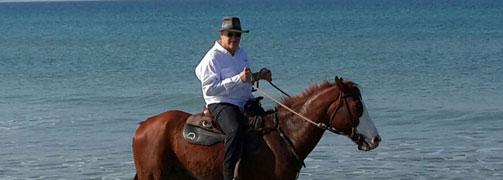 סדנאות שטח – סוסים ואינטליגנציה רגשית