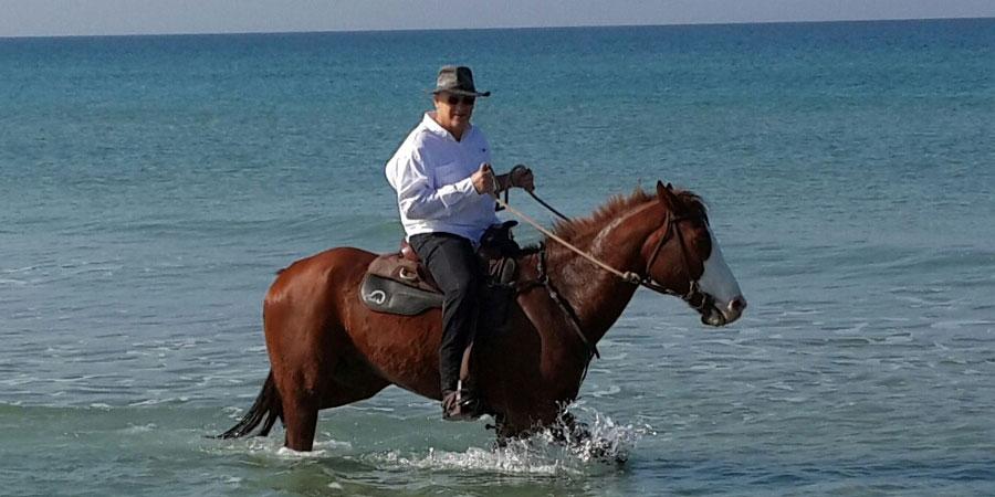 סוסים ואינטליגנציה רגשית
